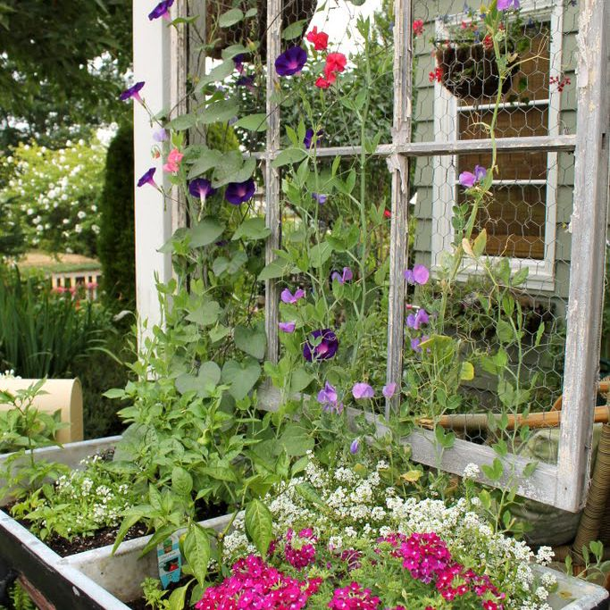 10 Diy Garden Trellises That Cost Less Than 20