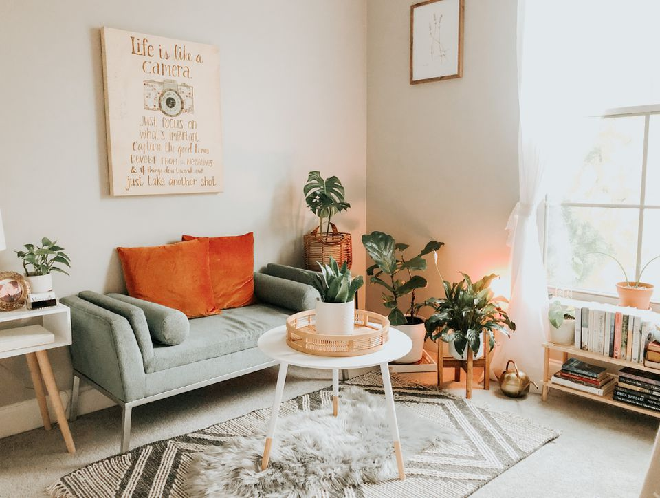 casual living room with plants and wall art