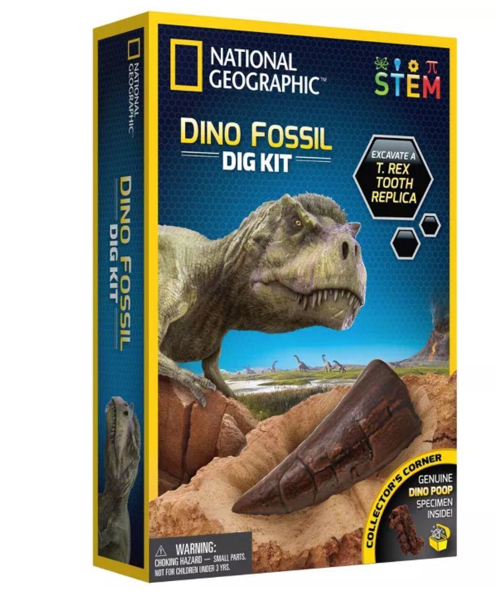 Dino-Fossil-Kit
