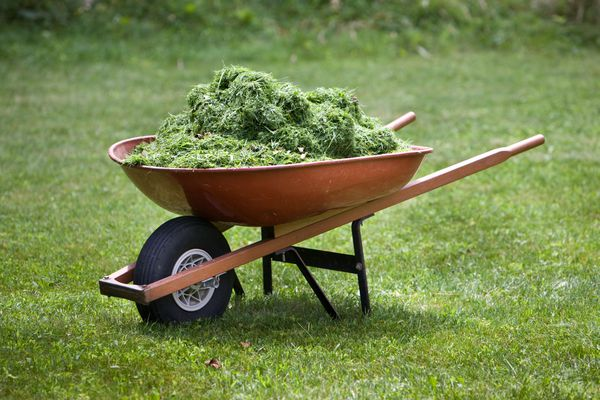 Red wheelbarrow with grass clippings