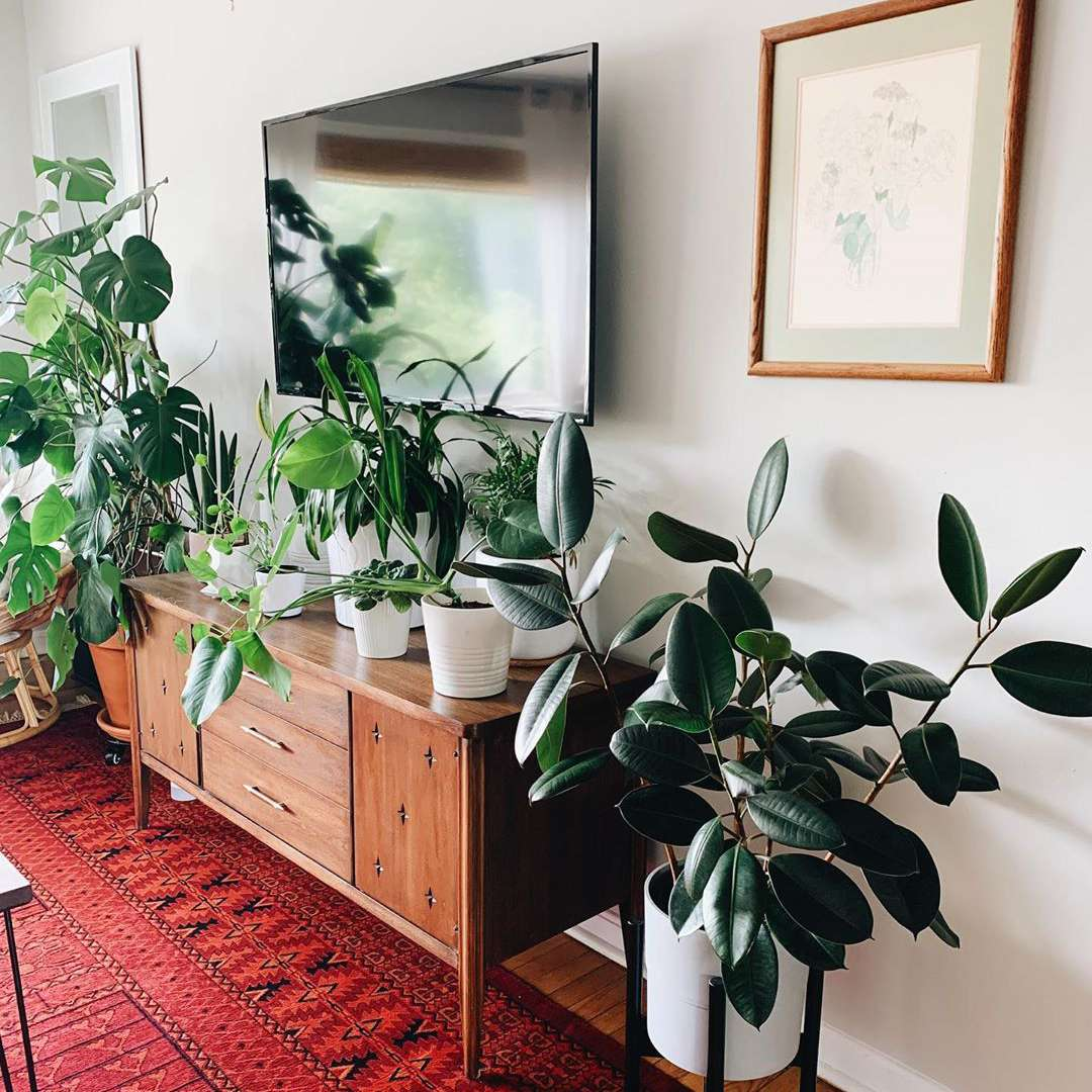 Mid century tv stand and plant stand