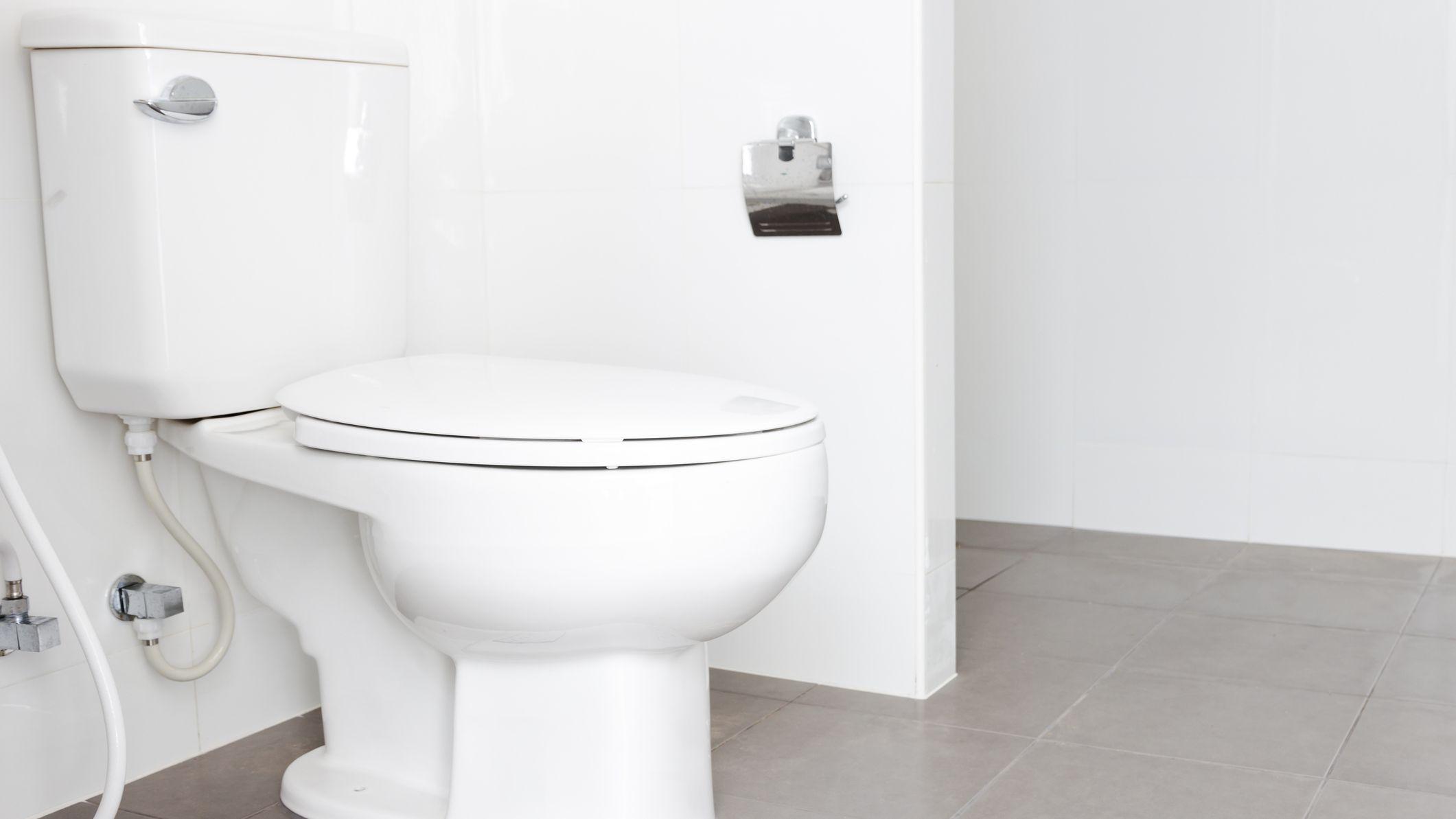 Types Of Toilet Handles