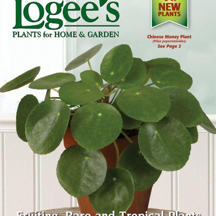 El catálogo de plantas de Logee 2018