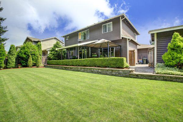Backyard landscape with trimmed hedges