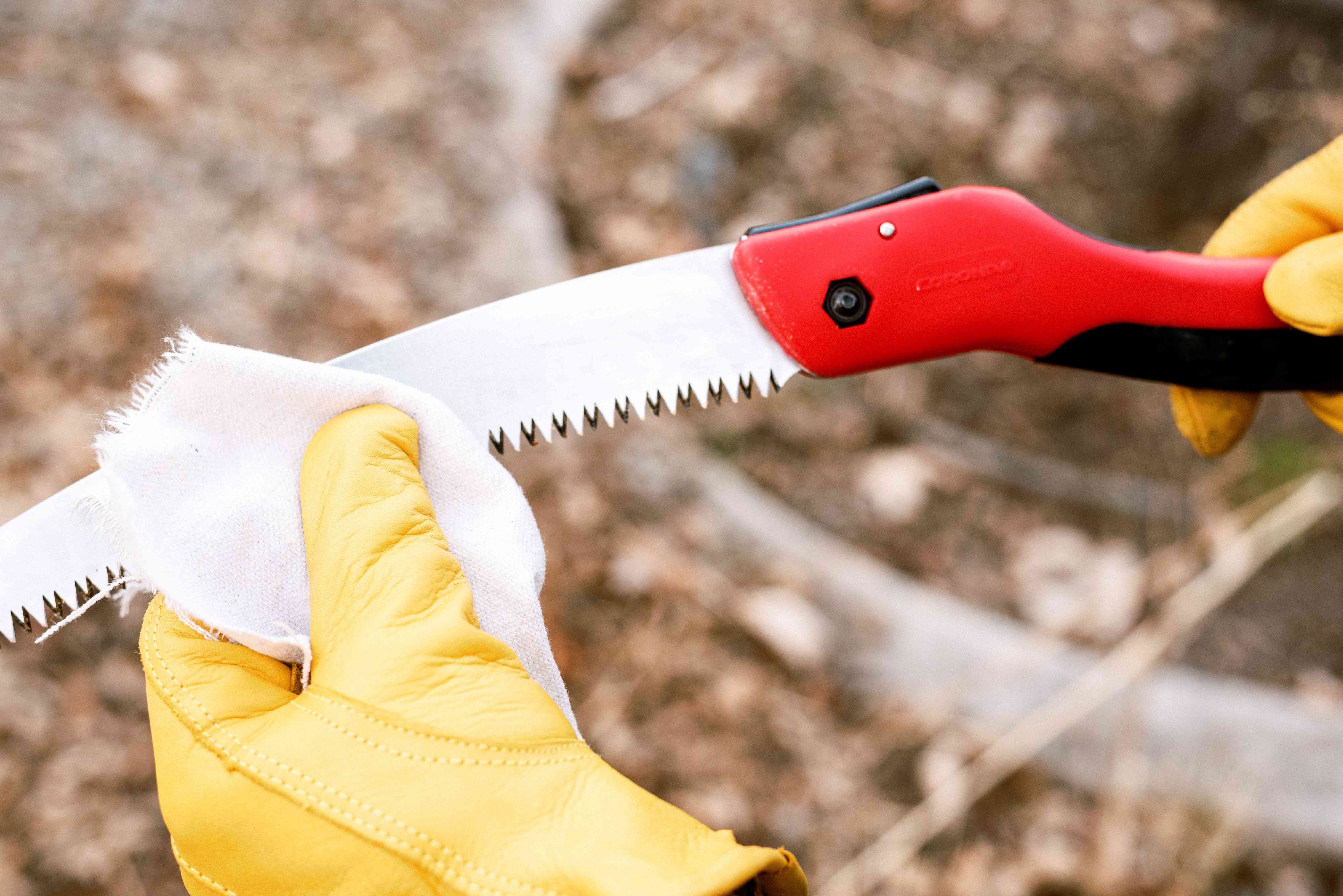 Pruning saw with red handle cleaned with white sturdy cloth