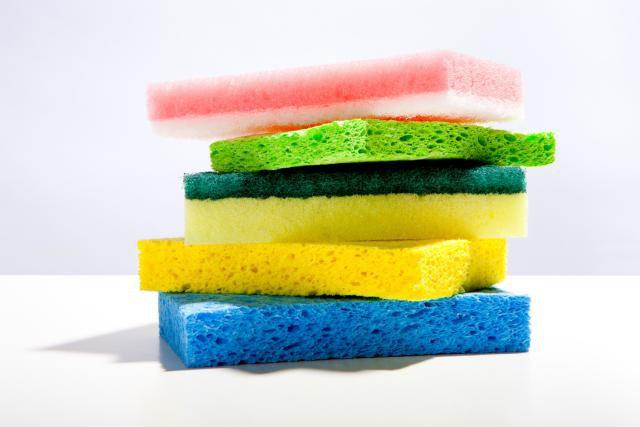 sponges.jpg