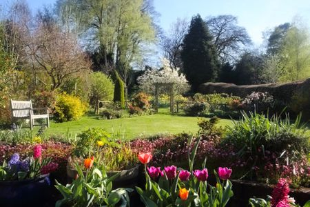 Top 6 spring blooming bulbs domestic english garden full of flowers in spring mightylinksfo