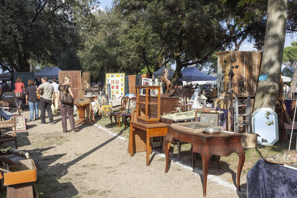 items displayed at a yard sale
