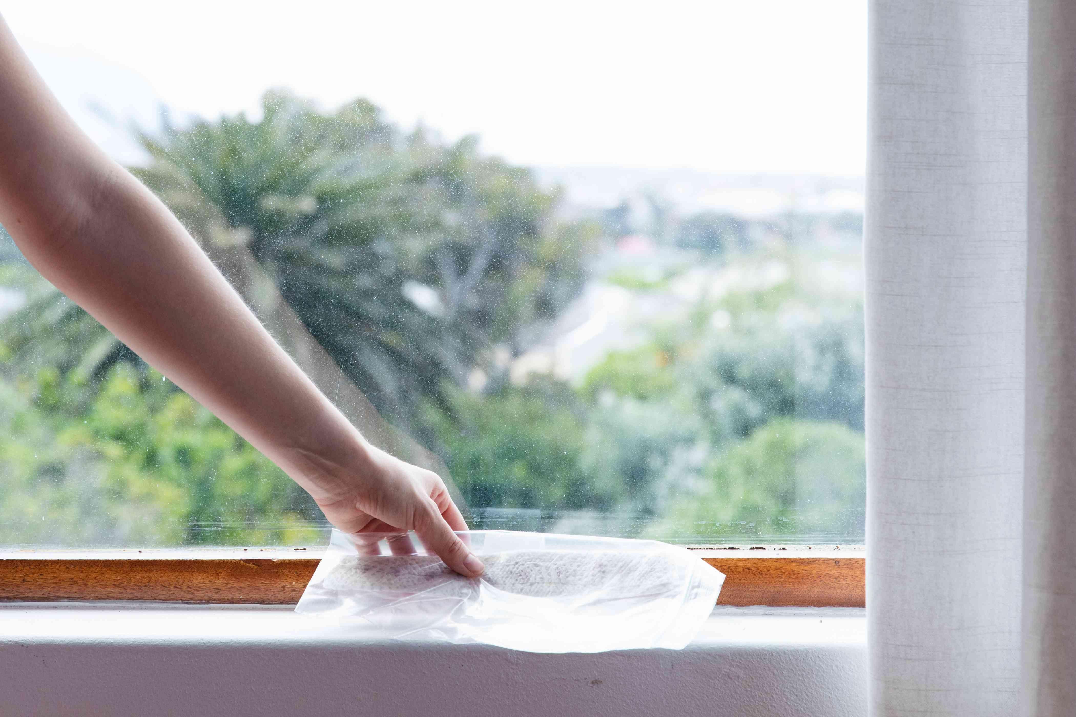 placing seeds on the windowsill