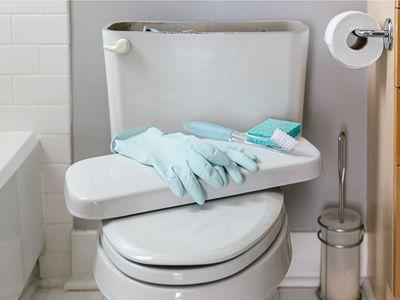 preparing to clean a toilet tank