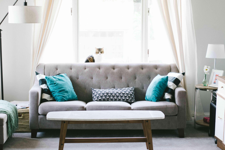 living room with gray sofa