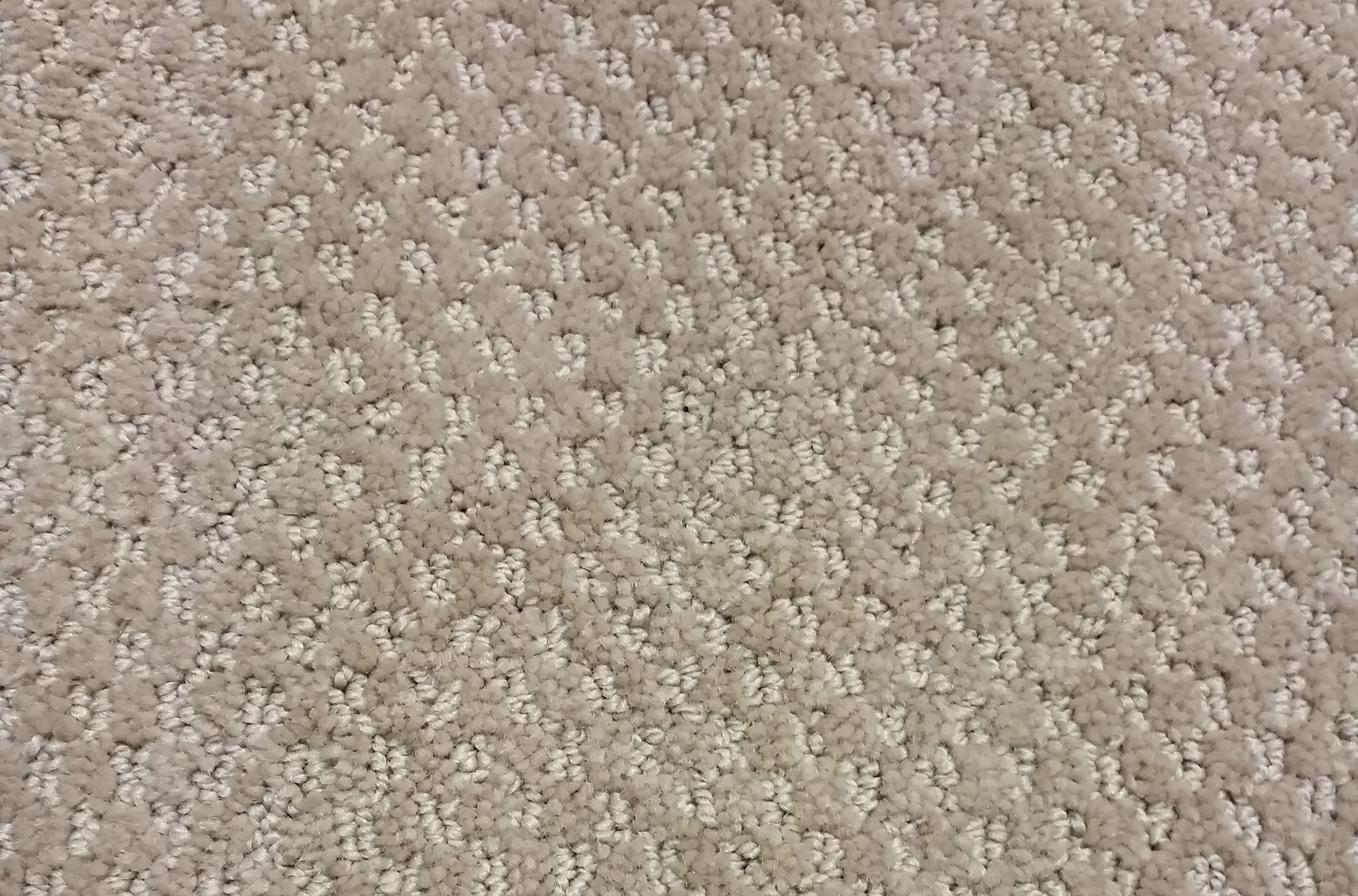 Greige Pin Dot Cut And Loop Style Carpet