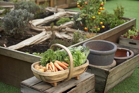 10 Tips For Successful Raised Bed Gardening