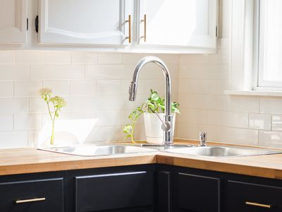 Corner sink with metal faucet and houseplant next to brightly-lit window