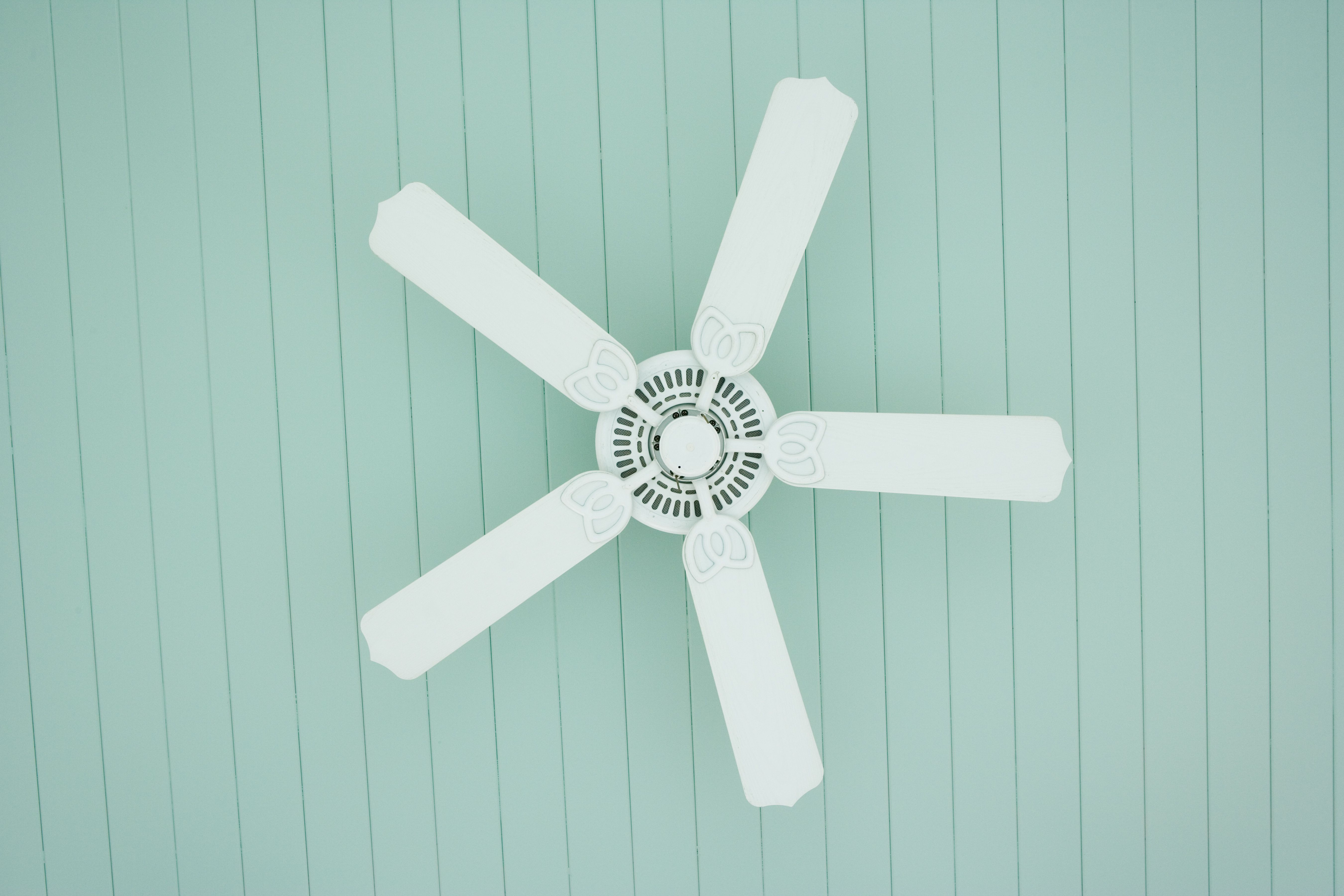 The 7 Best Ceiling Fans To Buy In 2019 Electric Fan Without Blade Manufacturers