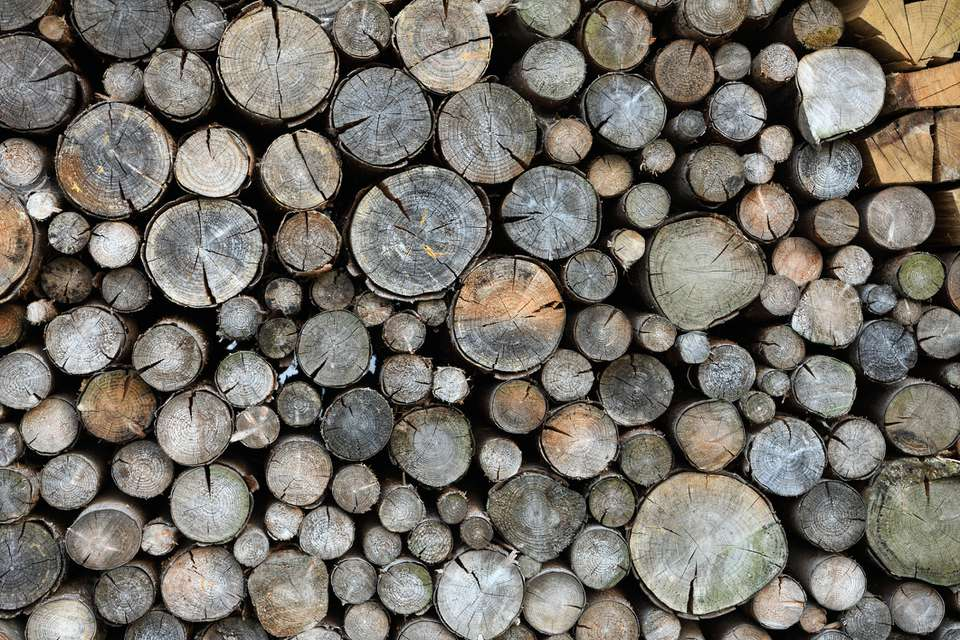 Heap of wooden logs at Görlitz, Germany.