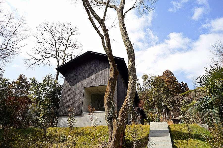 yakisugi exterior