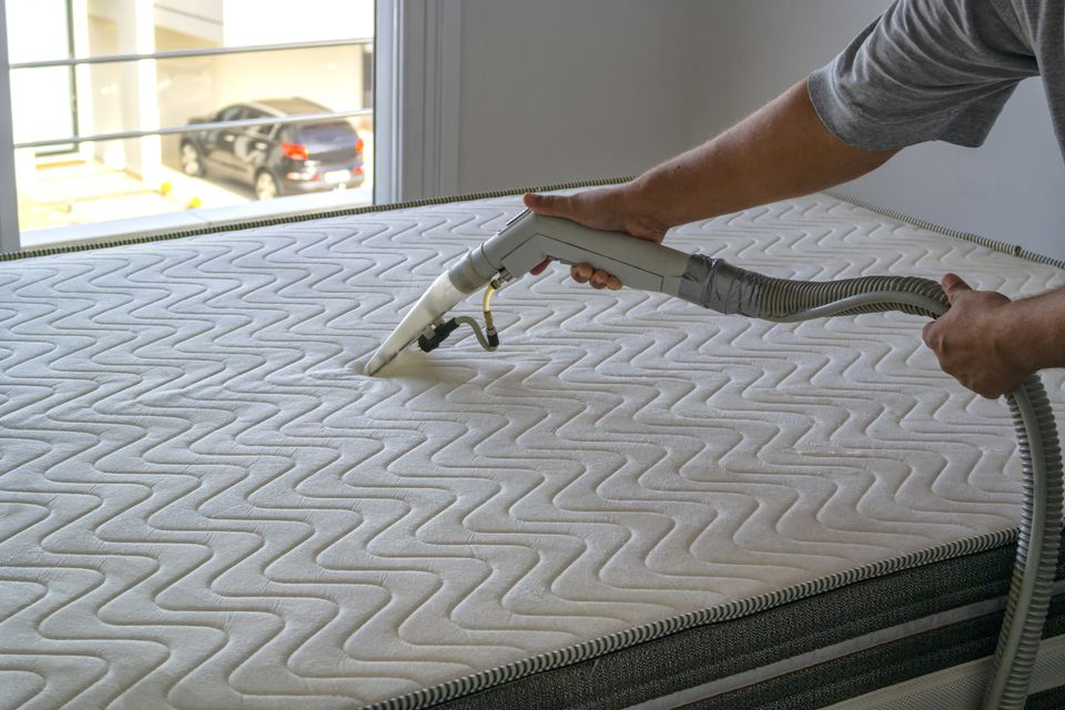 Professional cleaner using steam cleaner on mattress