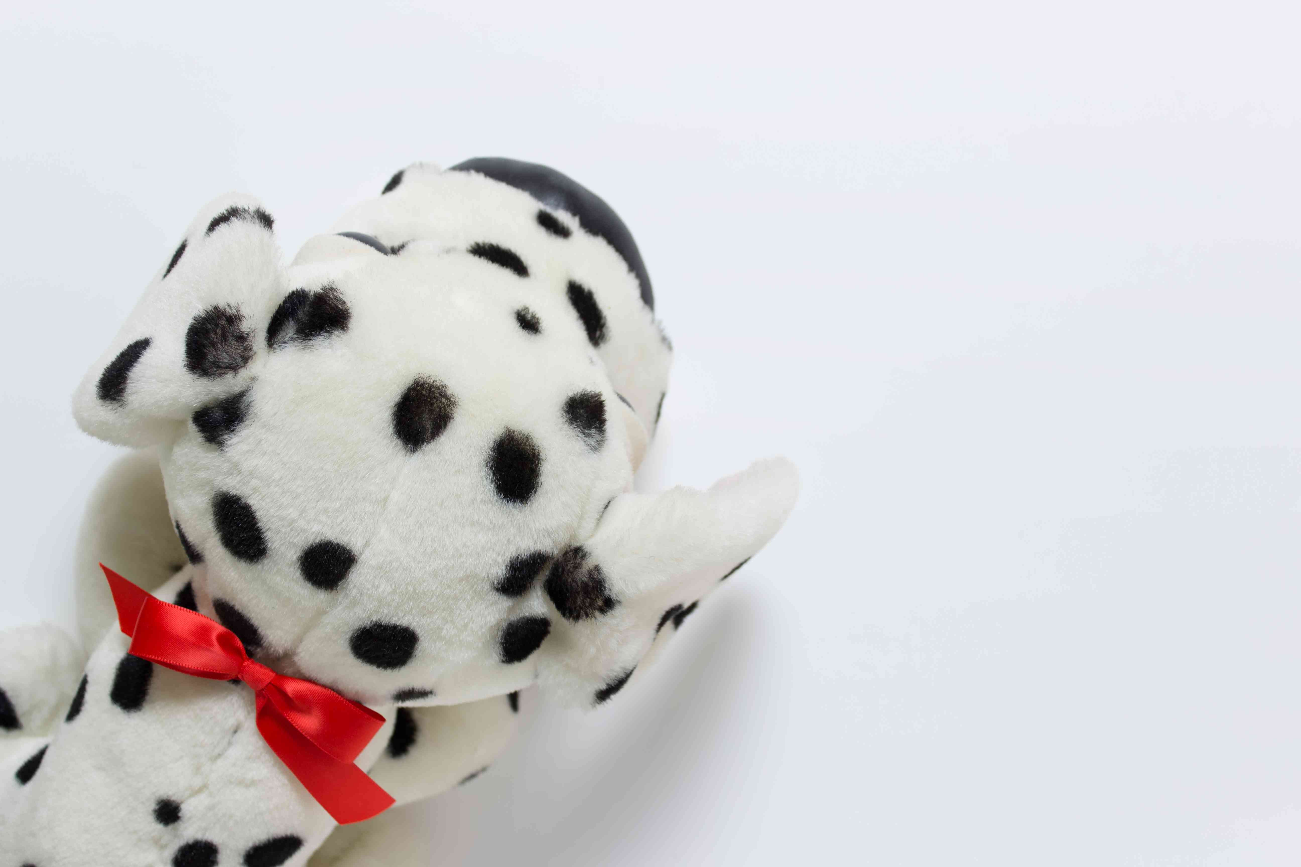 Little toy dog for present on white background