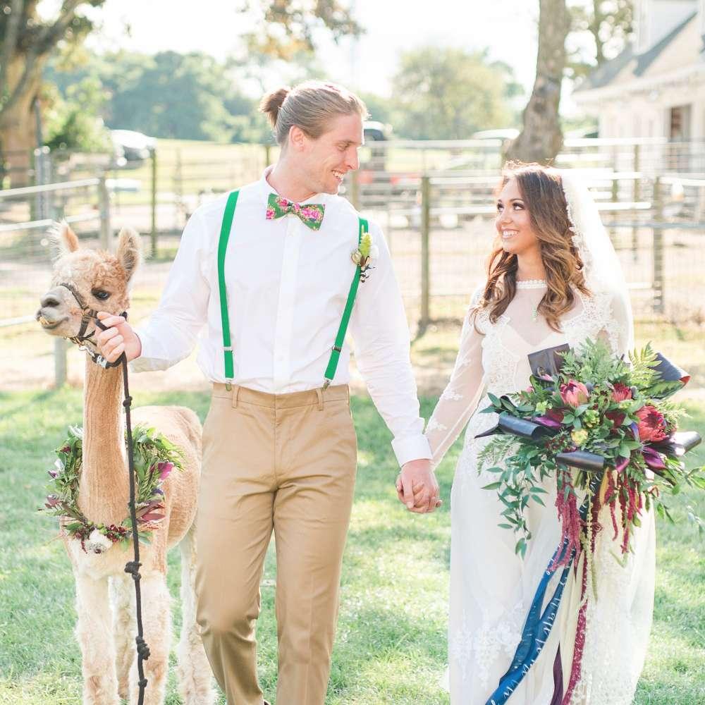 Alpaca farm wedding venue