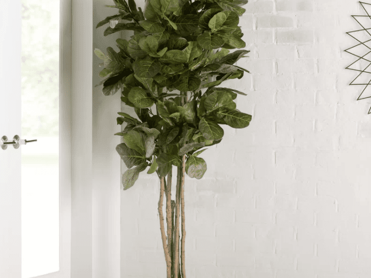 The 7 Best Artificial Plants Of 2021