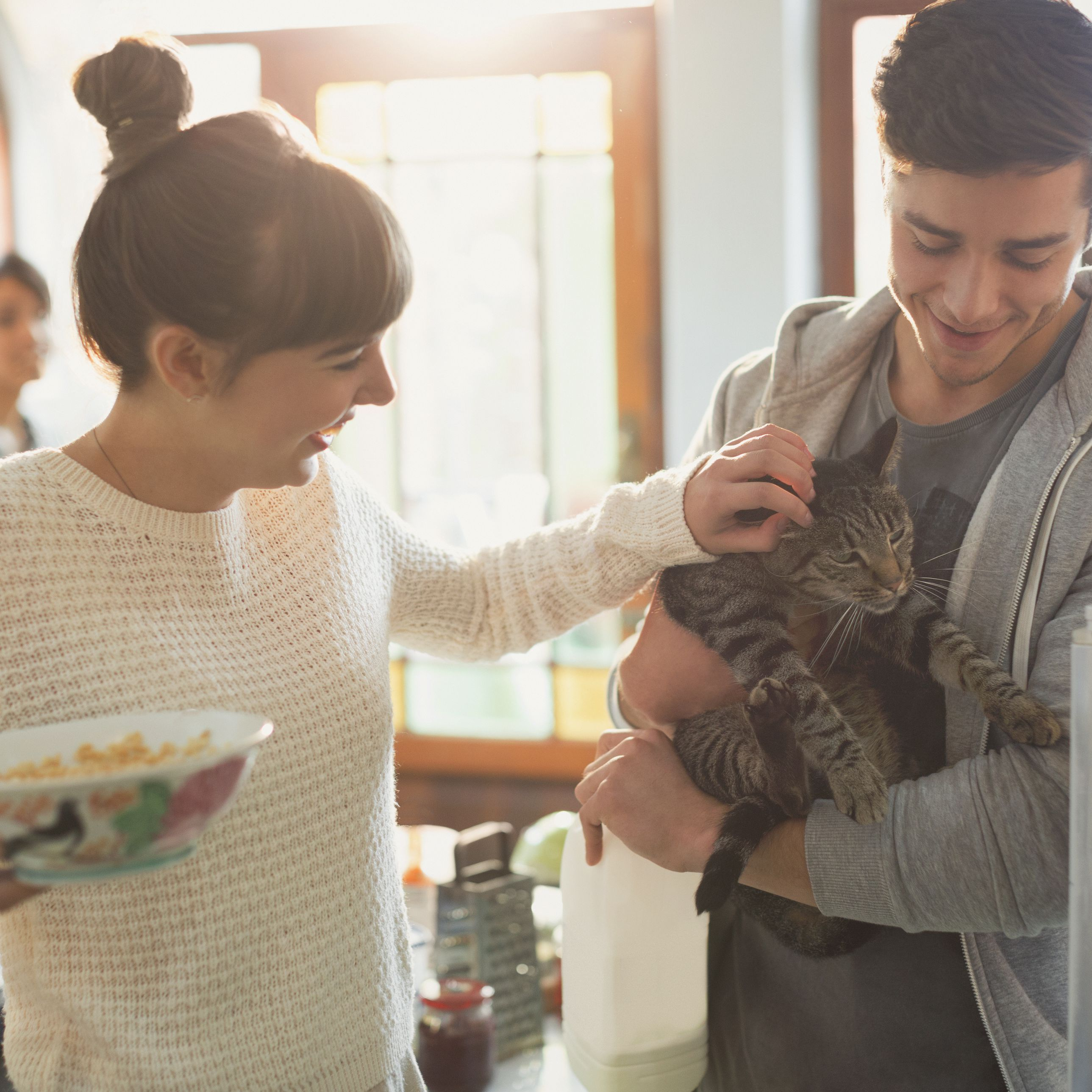 All About New York Roommate Laws