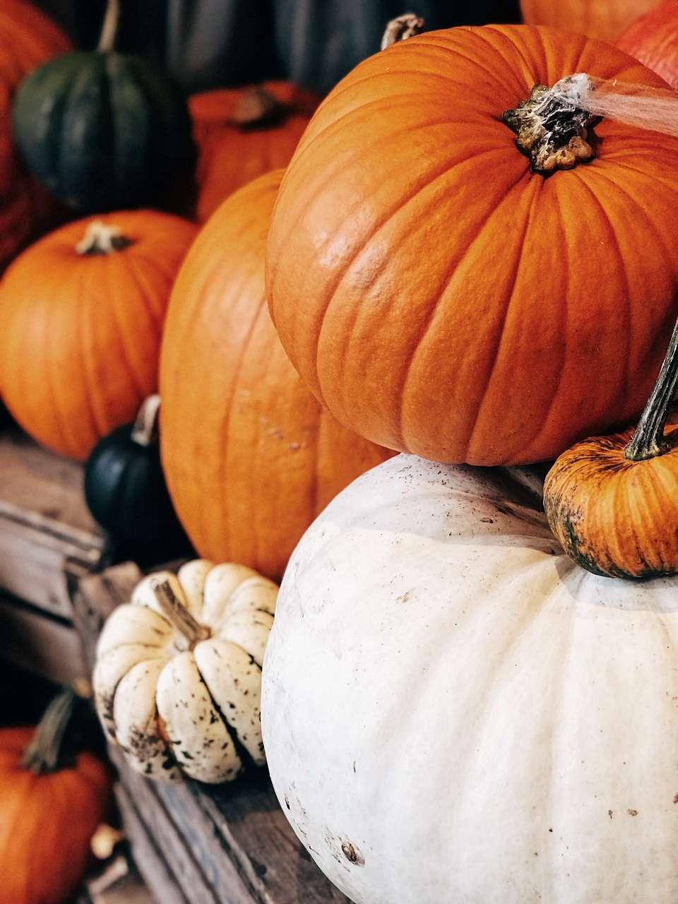 Pumpkins piled up