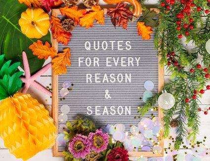letter board quote: