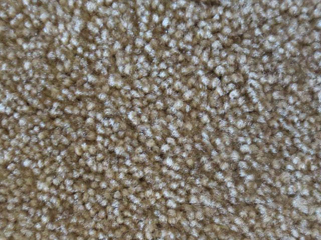 A Close Up Of Textured Saxony Carpet