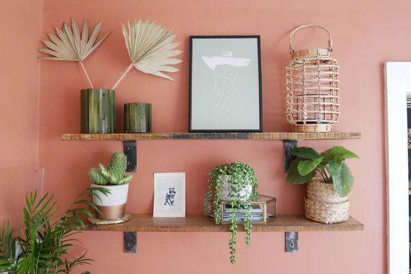 Kate plant shelf