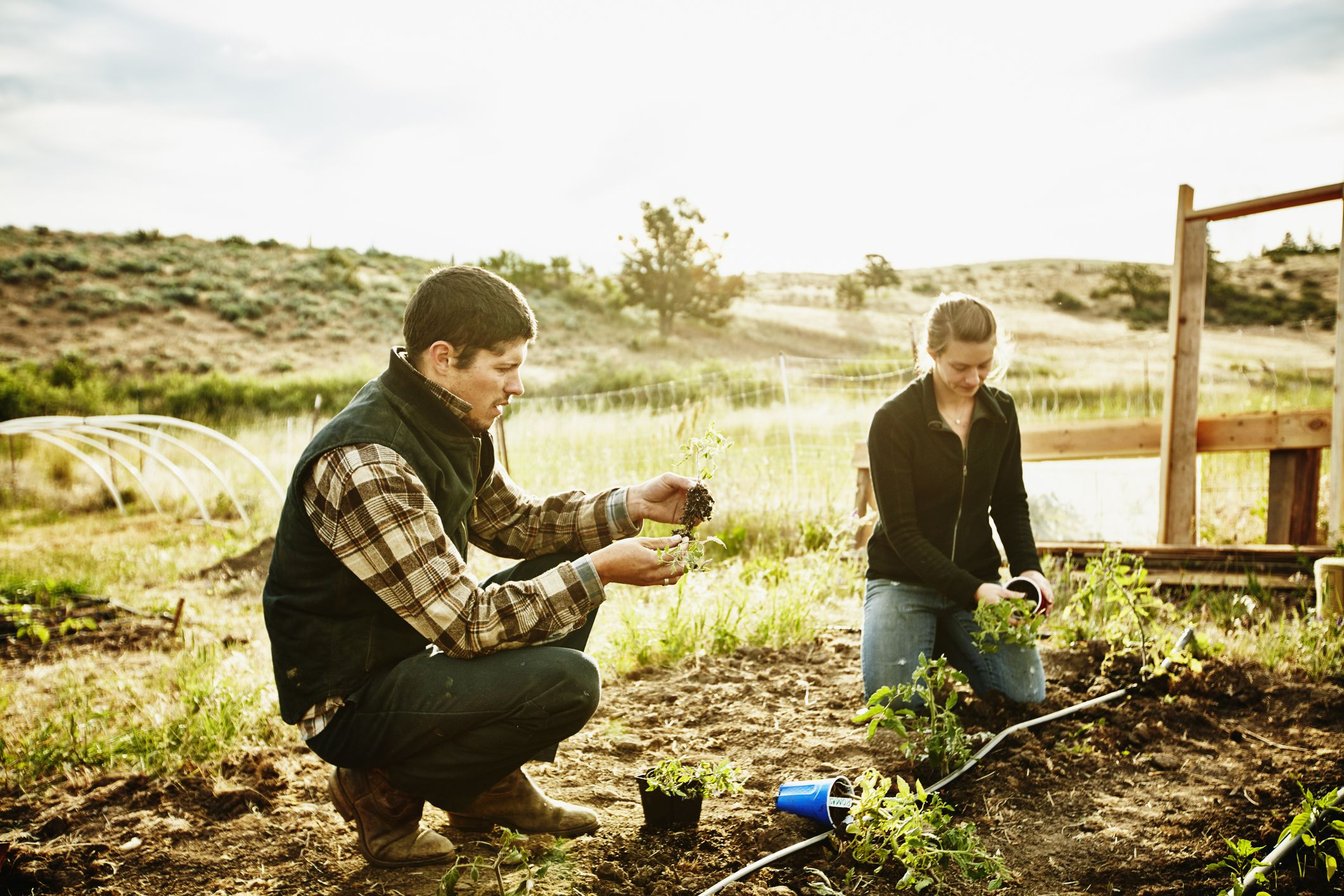 Starting Your Small Farm from Scratch