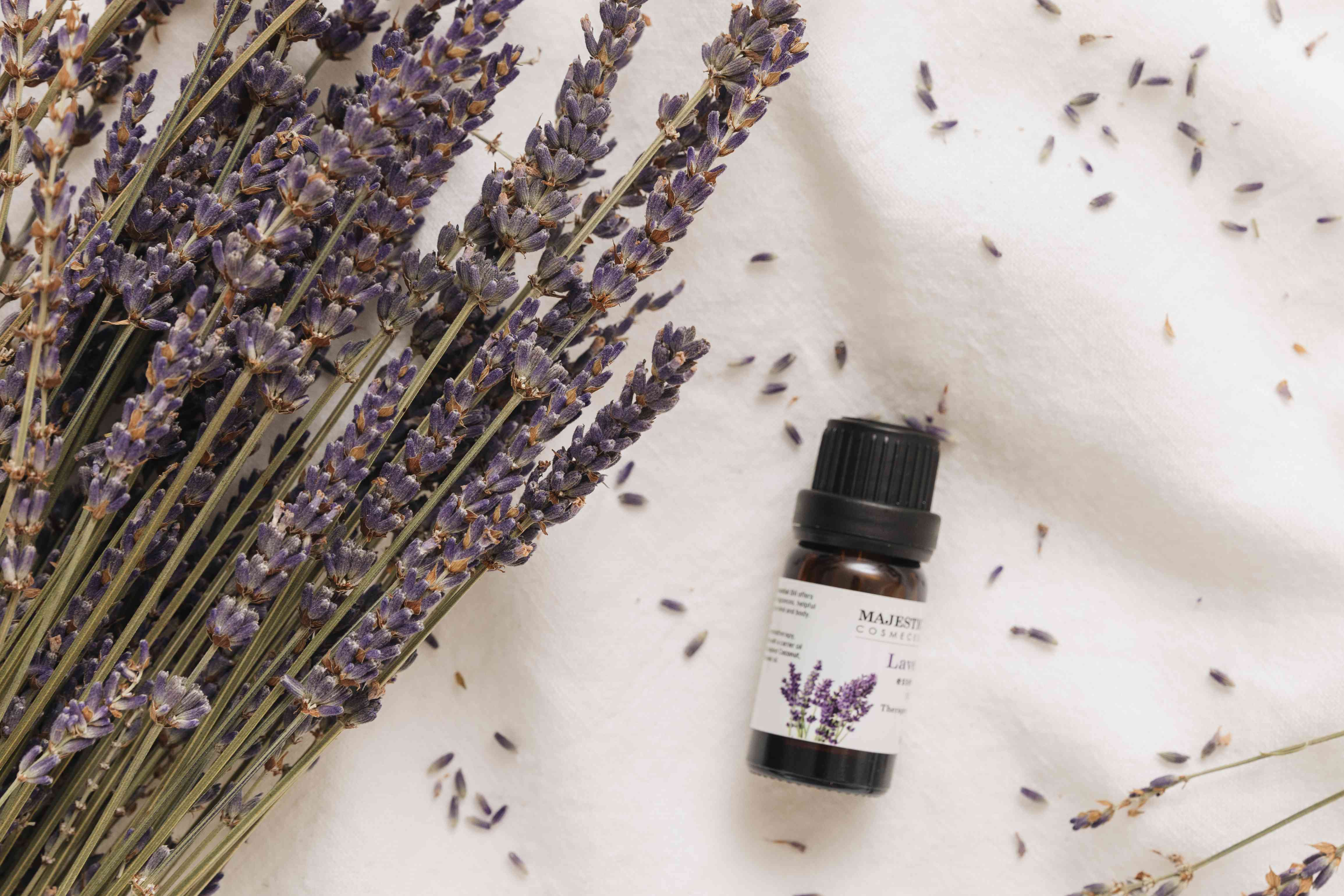 dried lavender and lavender essential oil