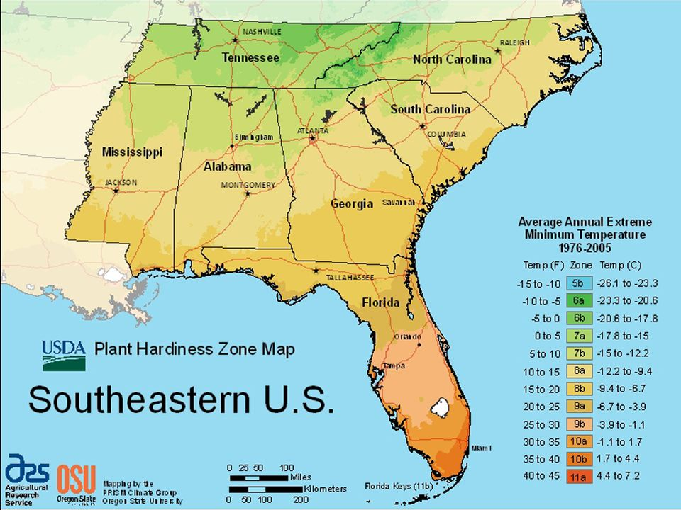 USDA Growing zone map for the Southeastern U.S.