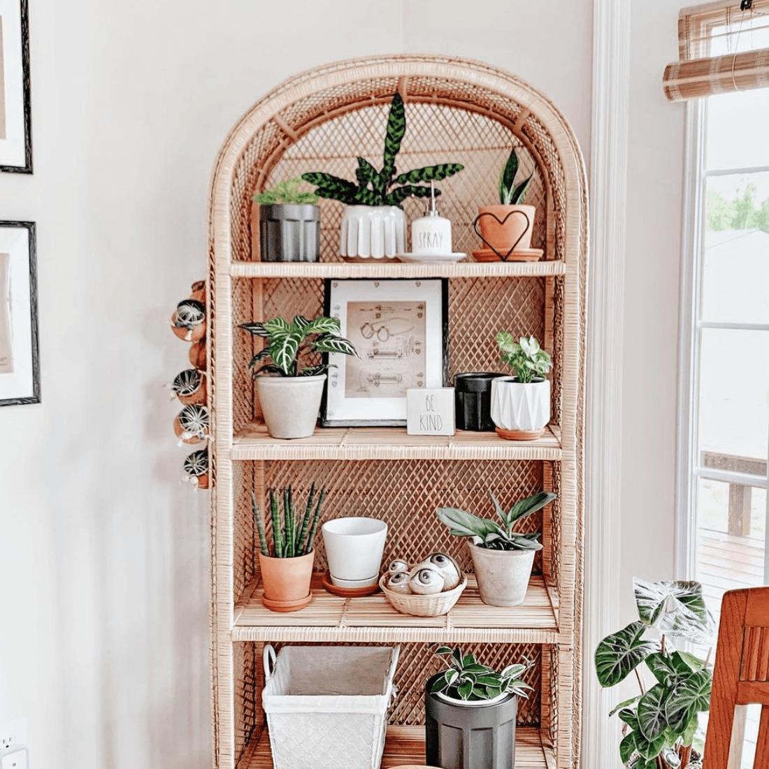 Missy Peterson plant shelf