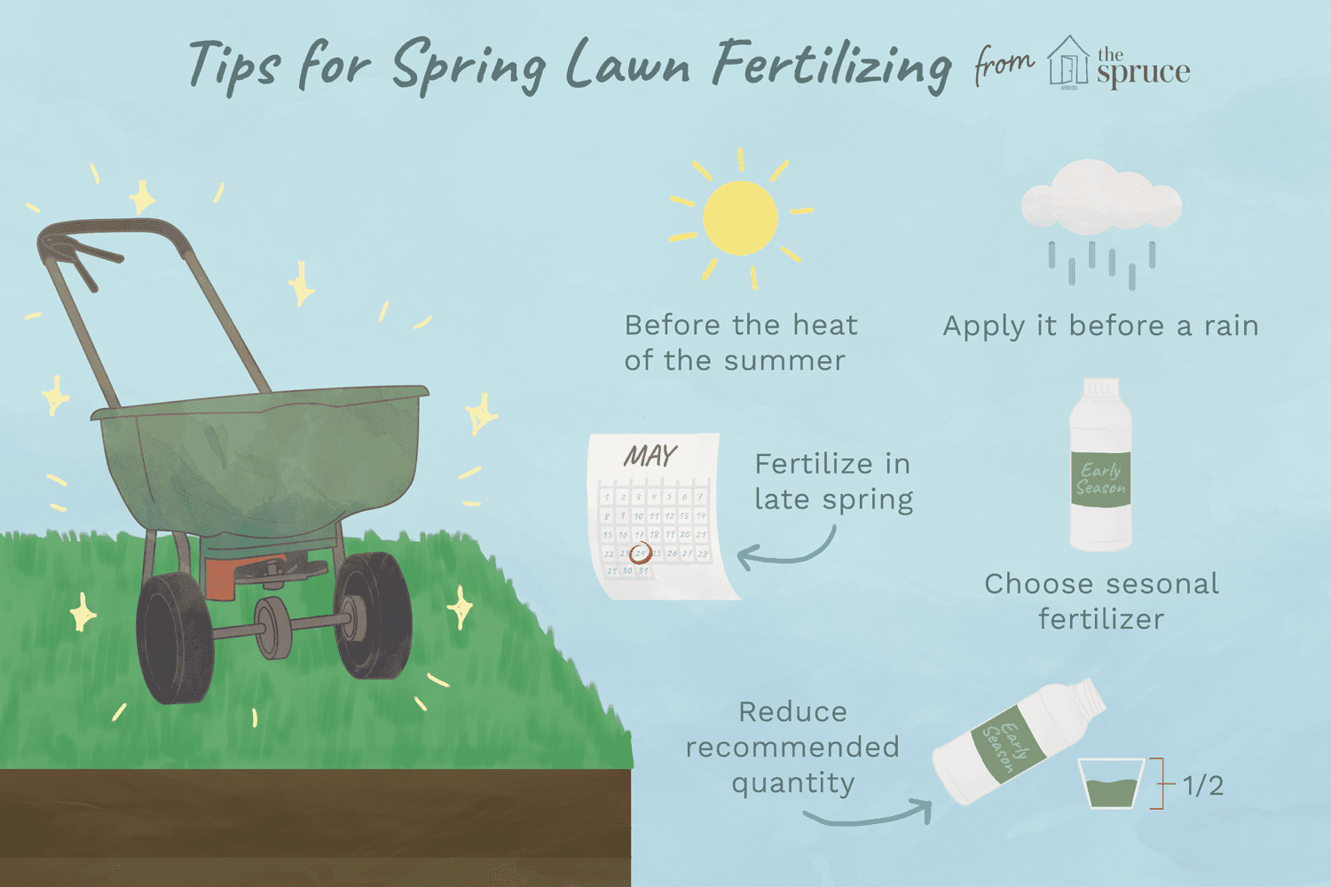 Best Time To Put Fertilizer On Your Lawn Mycoffeepot Org
