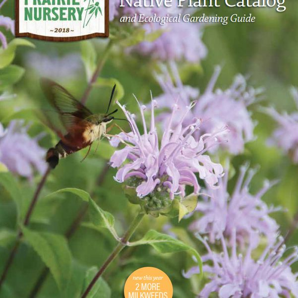 The 2018 Prairie Nursery Seed Catalog