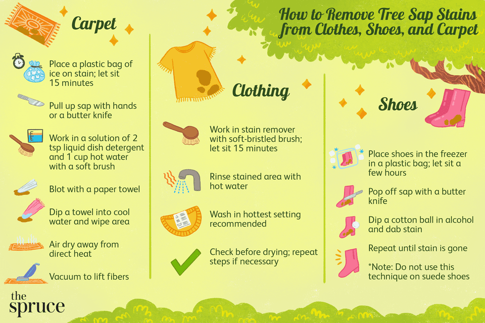How to Remove Tree Sap Stains from Clothes, Shoes, and Carpet