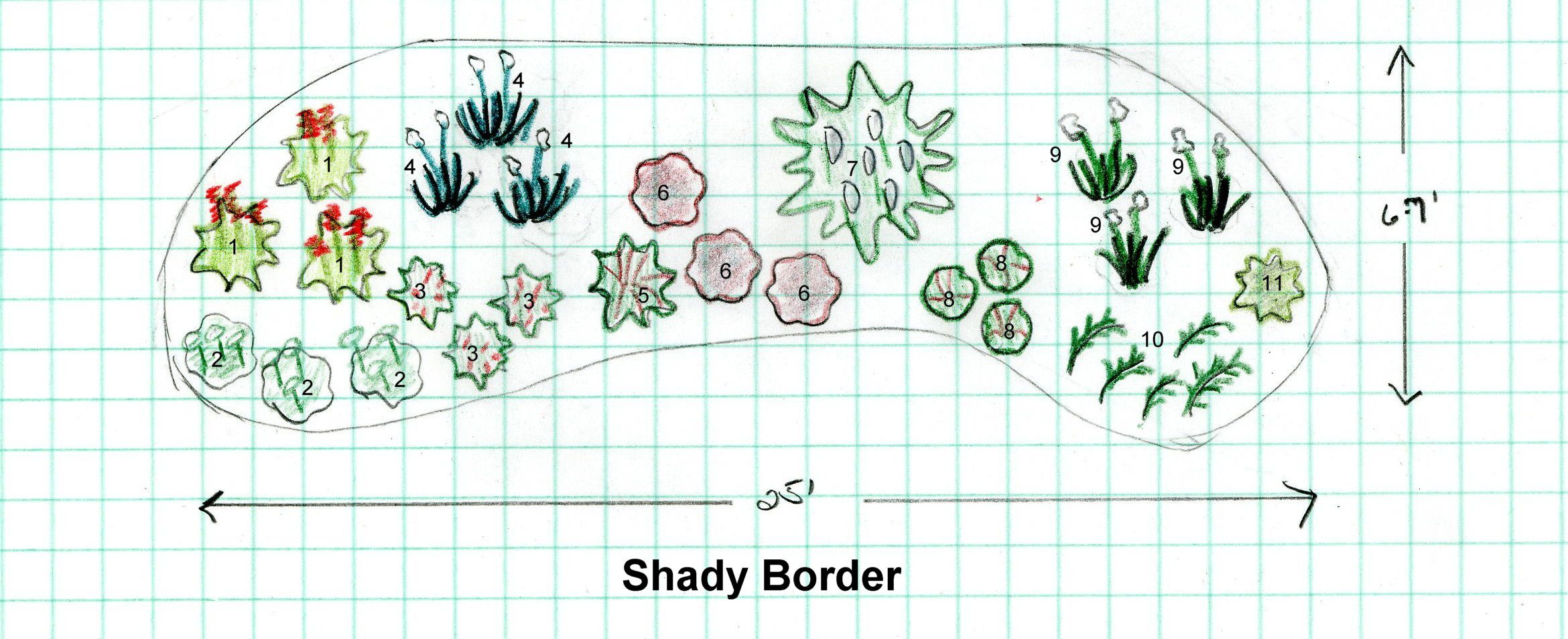 Designing a Shade Garden on