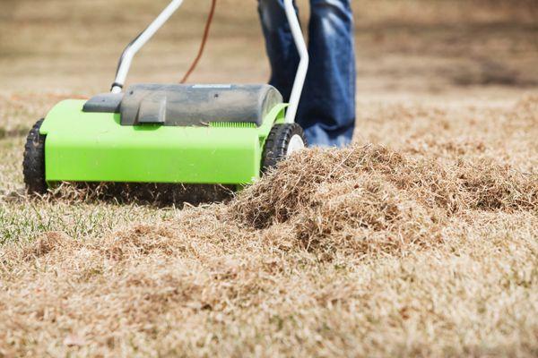 Electric Power Rake Dethatching Spring Yard Grass