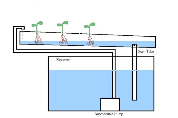 Diagram of a Nutrient Film Technique System