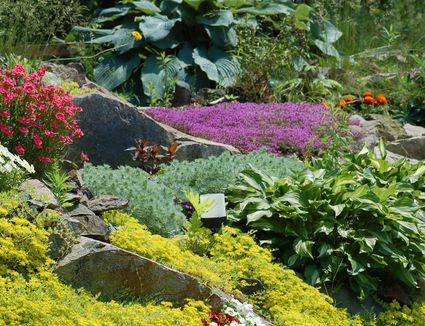 Outdoors & Gardening