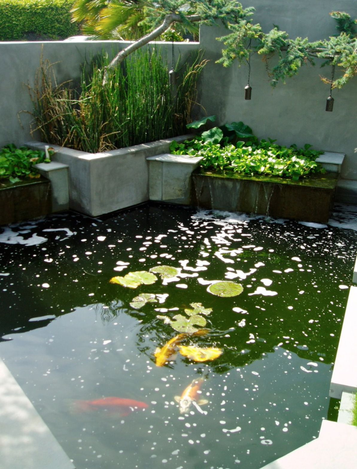 25 Pond Waterfall Designs and Ideas Raised Garden Ponds Designs on small plastic outdoor ponds, concrete fish ponds, raised water garden, gardening ponds, raised landscape ponds, beautiful goldfish ponds, above ground ponds, raised small fish ponds, small indoor fish ponds, small backyard ponds, raised stone pond, raised koi pond ideas, best koi ponds, koi fish ponds, raised pond kit, raised wood pond, flower bed ponds, backyard koi ponds, raised goldfish ponds, small ornamental ponds,