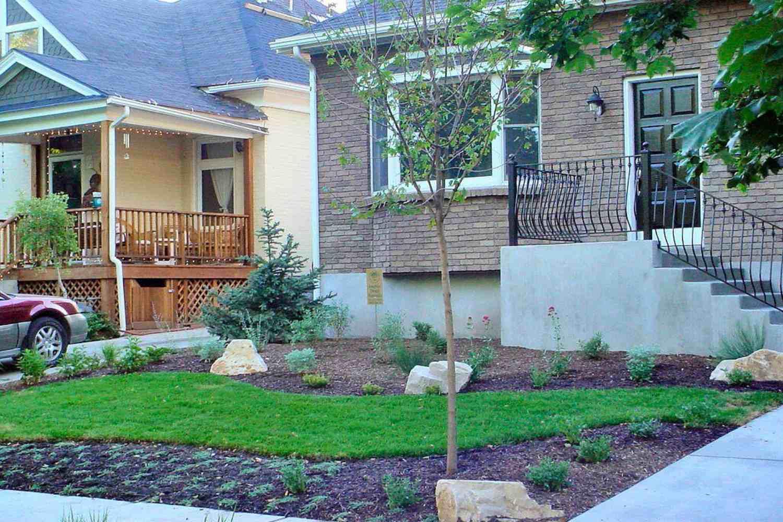 plantar el patio