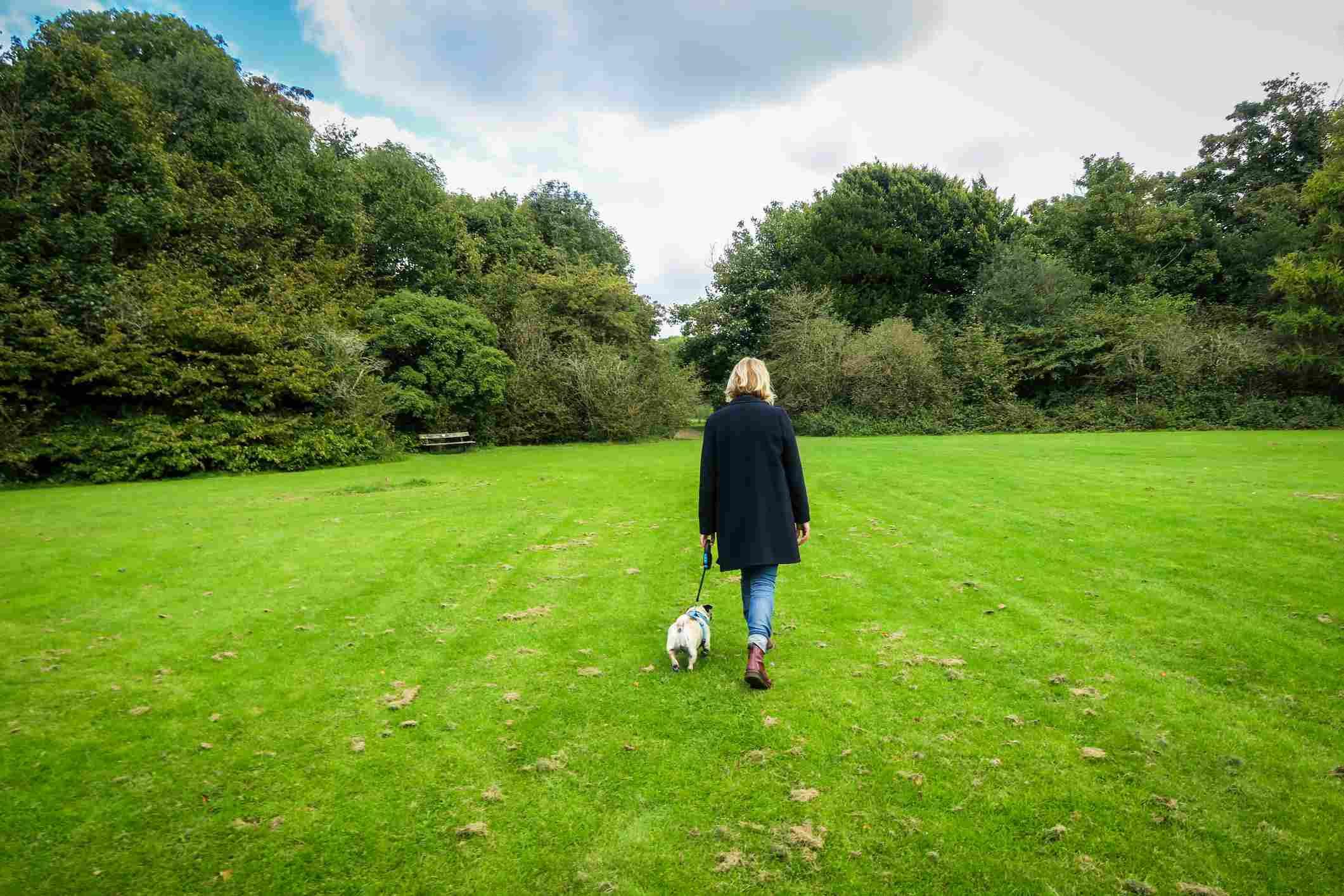 Women walking dog in park