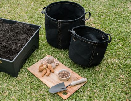 Cutting board with potatoes next to handheld shovel, container with soil and round cloth bags