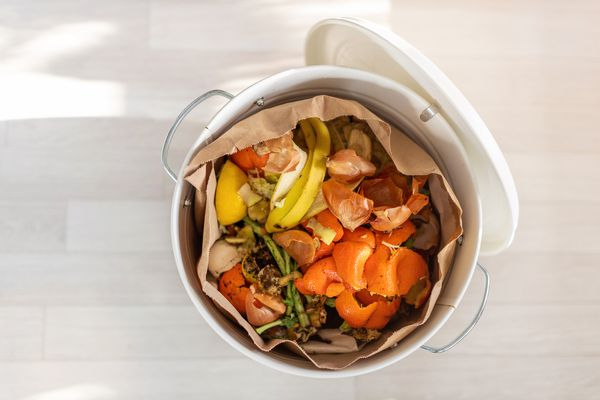Container full of domestic food waste ready to be composted