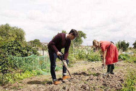 Prepare Your Soil (Tillage Methods on a Small Farm)