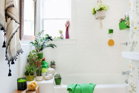 Plants Decorating A Small Bathroom