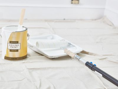 Ceiling paint supplies