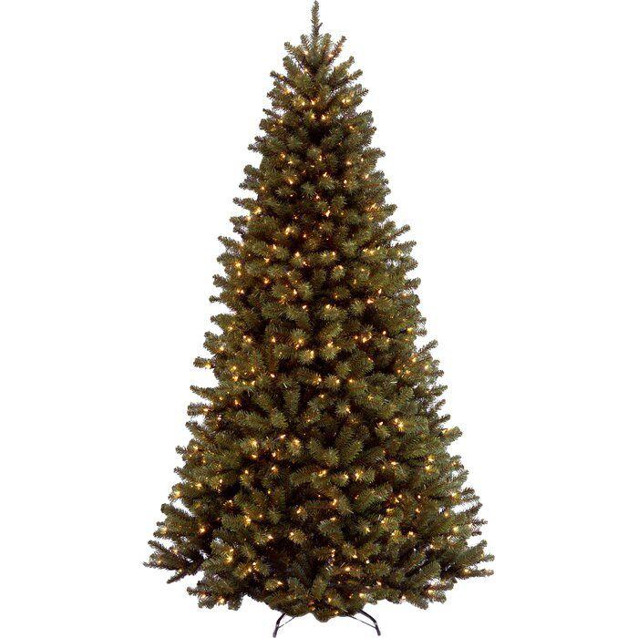 green-spruce